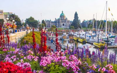 Downtown Victoria with Carissa Ropponen