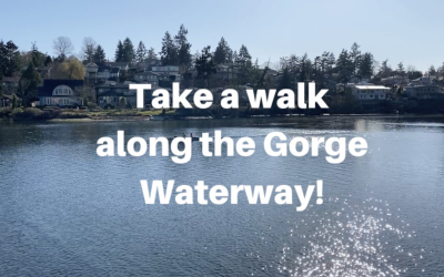 Take a walk along the Gorge Waterway!