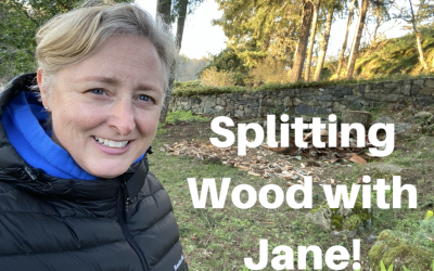 Splitting Wood with Jane!